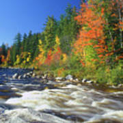 Swift River White Mountains Poster
