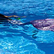 Swimming Mermaid Poster
