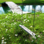 Swing In The Daisies With Bridge Poster