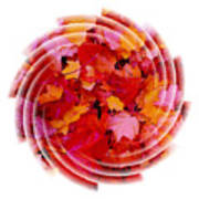 Swirling Colored Leaves Poster