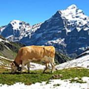 Swiss Scene Poster