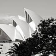 Sydney Opera House Black And White Poster