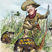 T. Roosevelt Cartoon, 1909 Poster