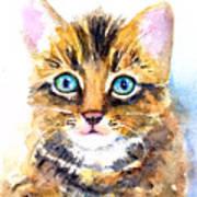 Tabby Kitten Watercolor Poster