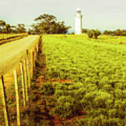 Table Cape Lighthouse Poster