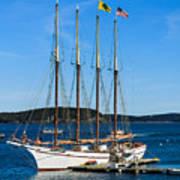 Tall Sailboat In Acadia Poster