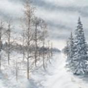 Tamarack Swamp In Winter 2  Poster