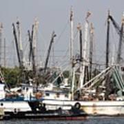Tampa Shrimp Boats Poster