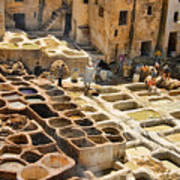 Tanneries Of Fes Morroco Poster