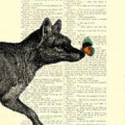 Tasmanian Tiger And Orange Butterfly Antique Illustration On Dictionary Page Poster