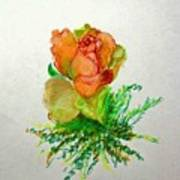 Tea Rose                        Copyrighted Poster