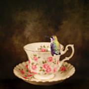 Tea Time With A Hummingbird Poster