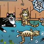 Cats Having Fun Playing With Spiders Poster
