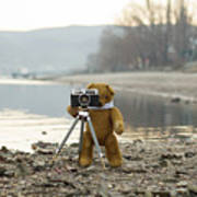 Teddy Bear Taking Pictures With An Old Camera By The Riverside Poster