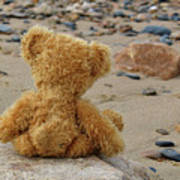Teddy On A Beach Poster