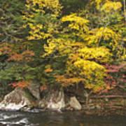 Tellico River  Poster