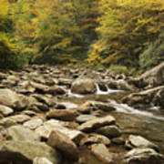 Tennessee Autumn Stream 6059 Poster