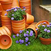 Terracotta Flower Pots Poster