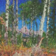 Tetons And Aspens Poster