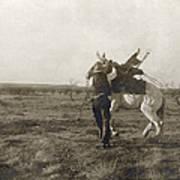 Texas: Cowboy, C1906 Poster