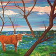 Texas Cow's Blulebonnet Field Poster