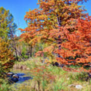 Texas Hill Country Autumn Poster