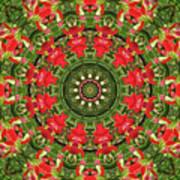 Texas Paintbrush Kaleidoscope Poster