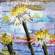 Texas Wildflowers Tp A E Poster