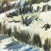 Texel Dunes Poster
