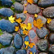 Texture. Autumn. Poster