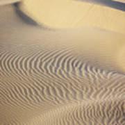 Thar Desert Dunes Poster