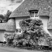 Thatched Cottages Of Hampshire 20 Poster