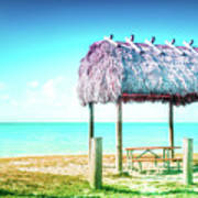 Thatched Roof Hut On Beach Poster