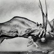 The Arabian Oryx Poster