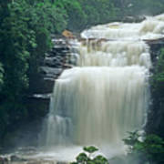 The Base Of Angel Falls In Canaima National Park Venezuela Poster