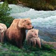 The Bears Of Katmai Poster