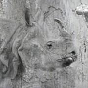 The Beautiful Rhino Poster