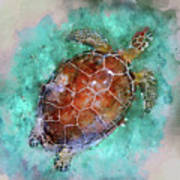 The Beautiful Sea Turtle Poster