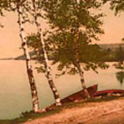 The Birches At Oak Birch Inn, Alton Bay, Lake Winnipesaukee, N. H.  Poster
