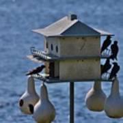 The Bird Hotel Poster