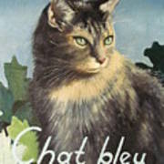 The Blue Cat Poster