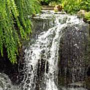 The Botanic Waterfall  Poster