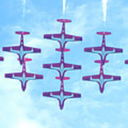 The Canadian Snowbirds Poster