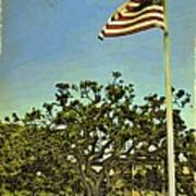 The Casements Flag Flying Poster