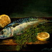 The Cold Water Mackerel With Dill  Lemon. Poster