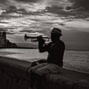 The Cuban Trumpeter 1 Poster