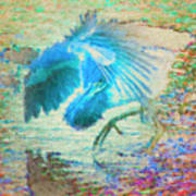 The Dance Of The Blue Heron Poster