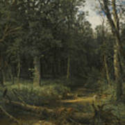 The Dark Wood Poster