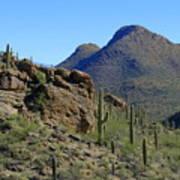 The Desert Mountains Poster