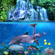 The Dolphin Family Poster